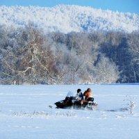 Зимняя поездка... :: Константин Филякин
