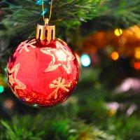 Новогодние они :: Виктория Олейник
