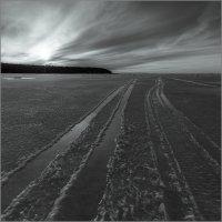Южный берег Финского залива. :: Юрий