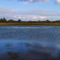 Озеро :: Вера Андреева
