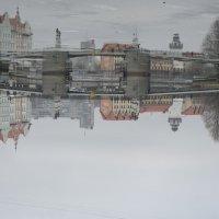 Калининград :: Дмитрий Пецуро