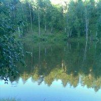 Замечательный пруд в деревне :: Владимир Ростовский