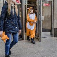 Оранжевые игрушки :: Михаил Михальчук
