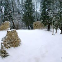 Зимний лес III :: Георгий Столяров