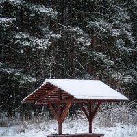 Зимний пейзаж :: Oleg Ko