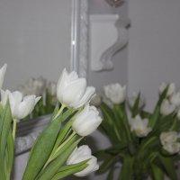 Любовь к белым тюльпанам :: Mariya laimite