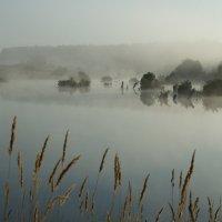 Утро туманное, утро седое... :: Вадим Славецкий