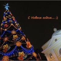 С Новым годом.... :: tipchik