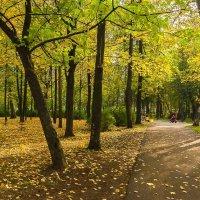 Осень в городском саду :: Валентин Котляров