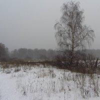 IMG_8853 - Последний день уходящего года :: Андрей Лукьянов