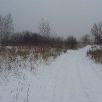 IMG_8883 - Последний день уходящего года :: Андрей Лукьянов