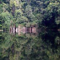 Озеро Нкуруба :: Евгений Печенин