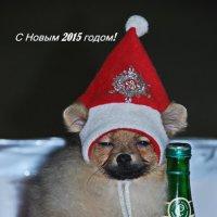 С Новым годом ! :: Анастасия Смирнова