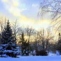 Зима в городском парке. :: Валентина Домашкина