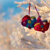 Зарисовки 1 января Нового 2015 года! С Новым годом! :: Сергей