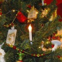 Пусть эта ёлочка в праздничный час Каждой иголочкой радует нас. :: Галина