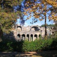 Везувий... Помпеи... Каждый Неаполитанец мечтает прожить свои последние дни на Родине! :: Леонид Нестерюк