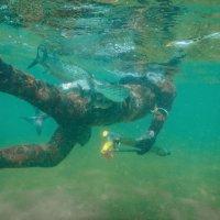 Подводная охота :: Дмитрий Макаров