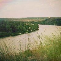 река Северский Донец :: Elena Ishchenko