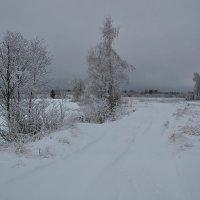 Зимний пейзаж-2. :: Виктор Евстратов