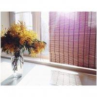 sunny day...morning :: Anastasia Furs