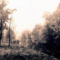 Осенний пейзаж 35 :: Цветков Виктор Васильевич