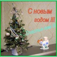 *** :: Мила Бовкун