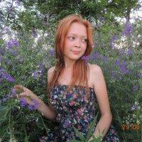лето :: Ольга Харина