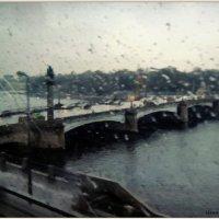Ушаковский мост в Санкт-Петербурге :: sv.kaschuk