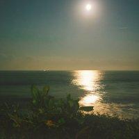 """""""новогодние ночь - луна над индийского океана"""" :: Ritzy Williams"""