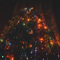 Ёлочка яркие огни :: Света Кондрашова