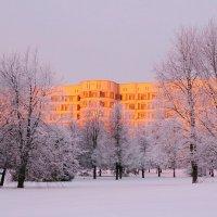 Утро в декабре :: Андрей Куприянов
