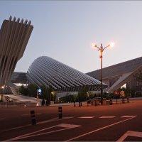 Дворец конгрессов. г.Овьедо, Испания. Архитектор С. Калатрава :: Lmark