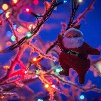 Новогоднее настроение :: Наталья Ломоносова