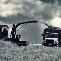 битва за урожай :: Дмитрий Анцыферов