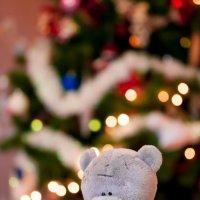 Новогоднее настроение :: Natalya Kopyl