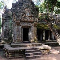 Камбоджа. Храм Beng Mealea. XI-XII вв. :: Rafael