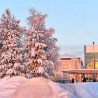 Розовая зима :: Алёна Михеева