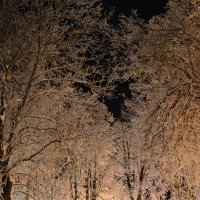 Зимняя сказка 10 :: Константин Жирнов