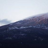 Склон. (Национальный парк Бурабай). :: Arman