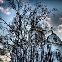 Собор  А.Невского, Краснодар. :: Андрей Печерский