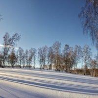 Зимний день :: Николай Мальцев