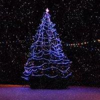 Рождественская ёлка в Шумилино. :: Анатолий Клепешнёв