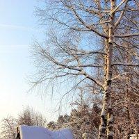 Морозной тишина дремотой... :: Лесо-Вед (Баранов)