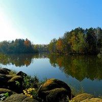 Осенний денек :: Петр Заровнев