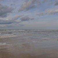 Зимний пляж... :: Kamyshlov Victor