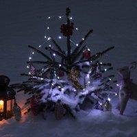 С Рождеством! :: Mariya laimite