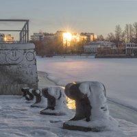Солнечный зайчик :: Valeriy Piterskiy