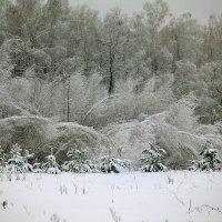 Зима :: Иля Григорьева