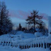 """Все глушь, все снег..."" :: Galina S*"